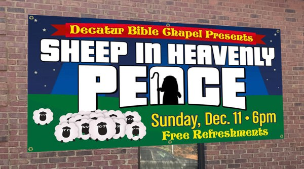 sheep banner image
